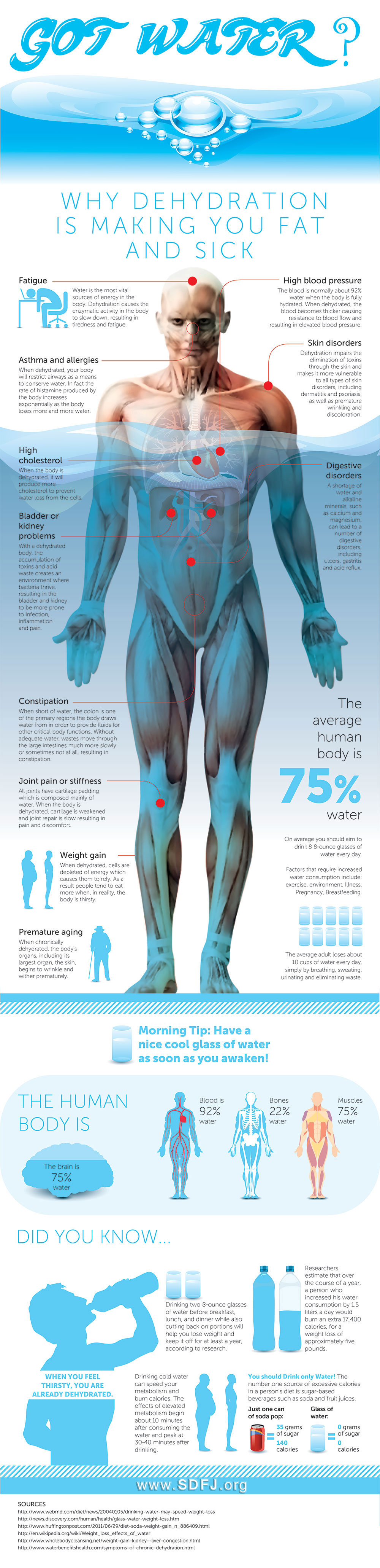 water dehydration infographic