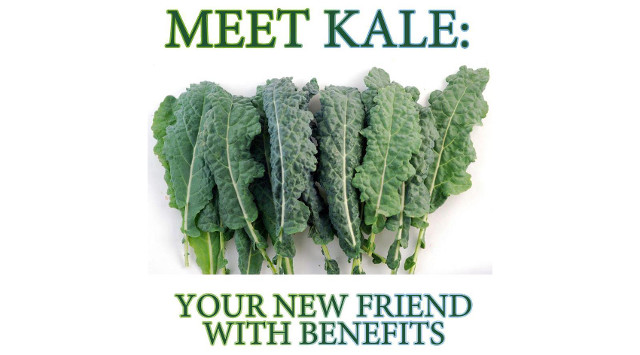 kale new beef