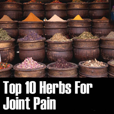 2013-11-12-top-10-herbs-for-joint-pain