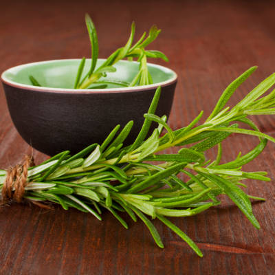 2013-11-25-spearmint-and-rosemary-extracts-improve-memory
