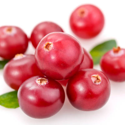 2013-12-24-the-health-benefits-of-the-humble-cranberry