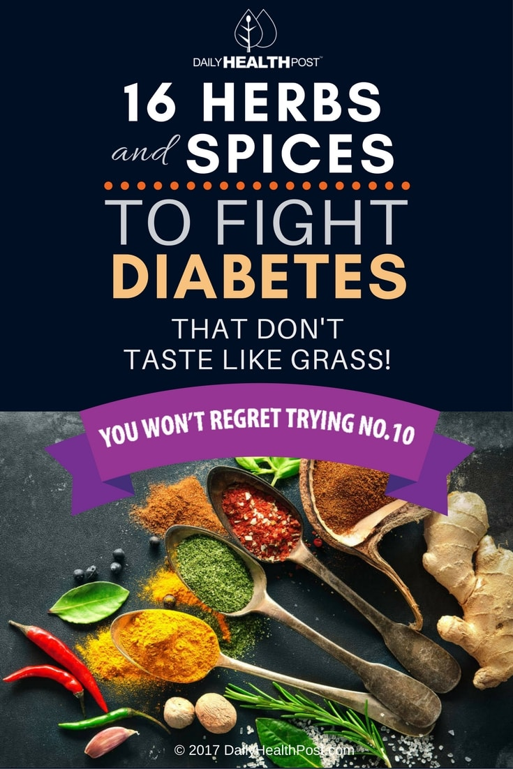 16 Herbs And Spices For Diabetes That Don T Taste Like Grass