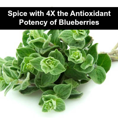 2014-01-02-powerful-bacteria-killing-spice-with-4-times-the-antioxidants-of-blueberries