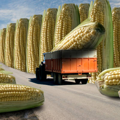 2014-01-16-big-food-wants-gmos-to-be-labeled-as-natural
