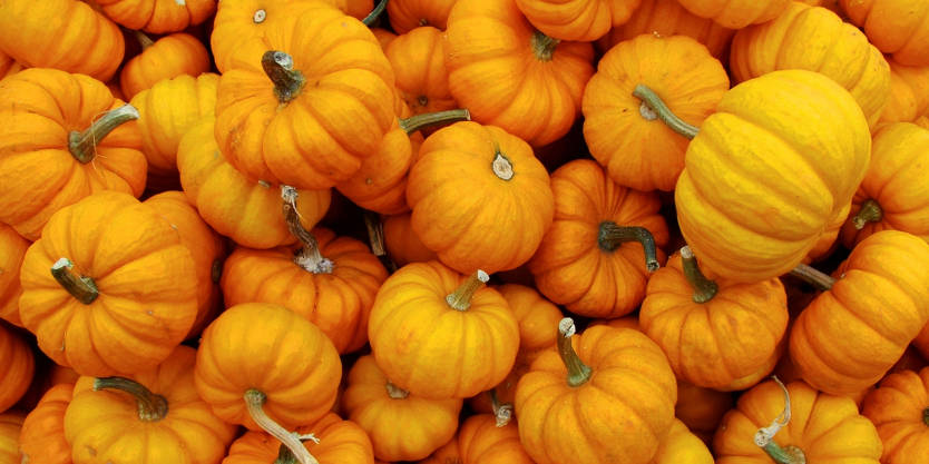 11 Delicious Ways To Stuff A Pumpkin recommendations