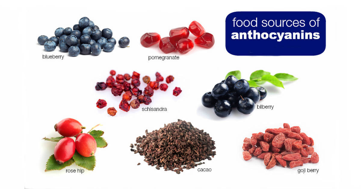 anthocyanin food sources