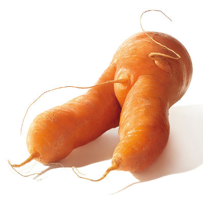 ugly carrot vegetable
