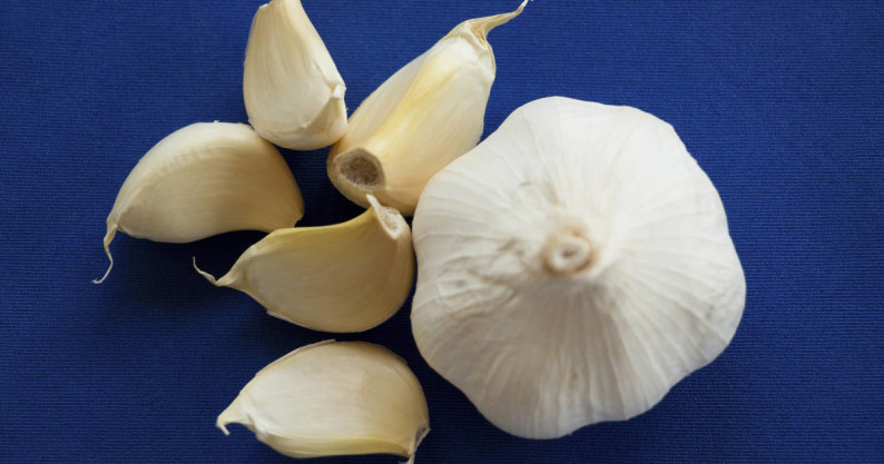eating raw garlic