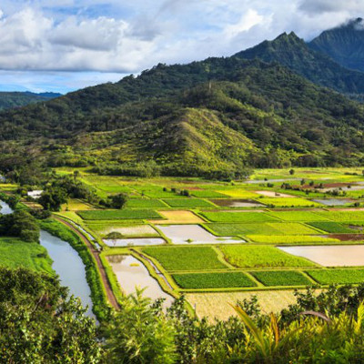 biotech sues hawaii government over gmo restrictions