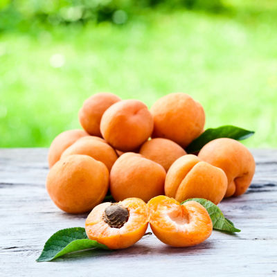 healthy apricot recipes