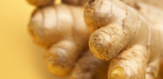 ginger root herb