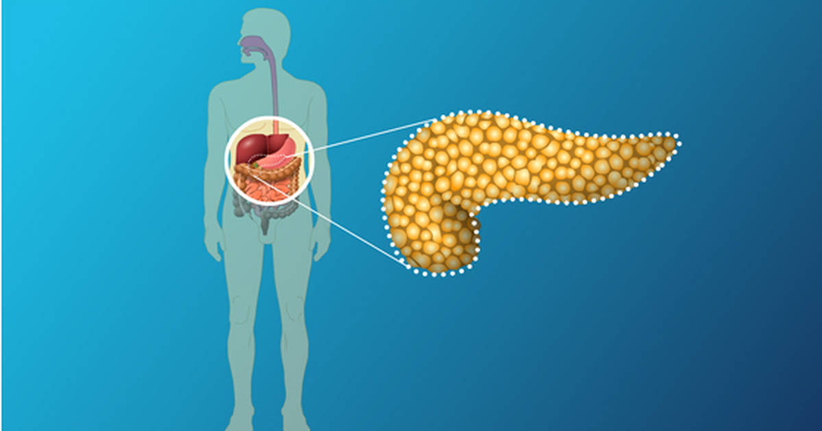 8 Foods That Your Pancreas Will Surely Love