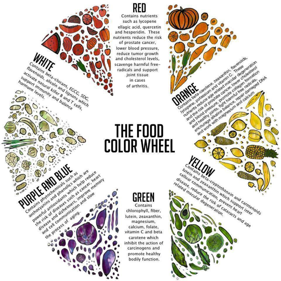 food colol wheel