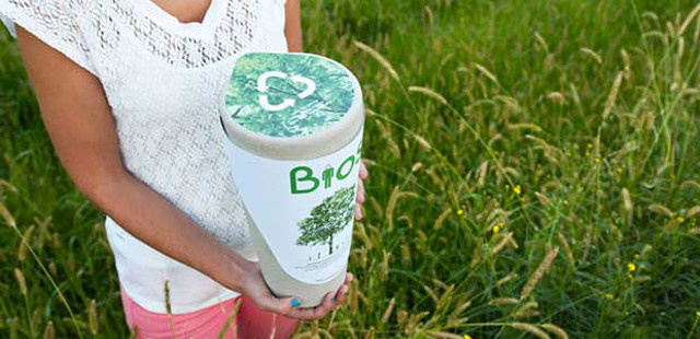 biodegradable urn turn you into tree after death