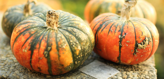 pumpkin seed oil causes hair increase in mend with alopecia