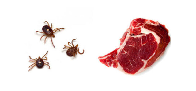 tick bite makes you allergic to red meat