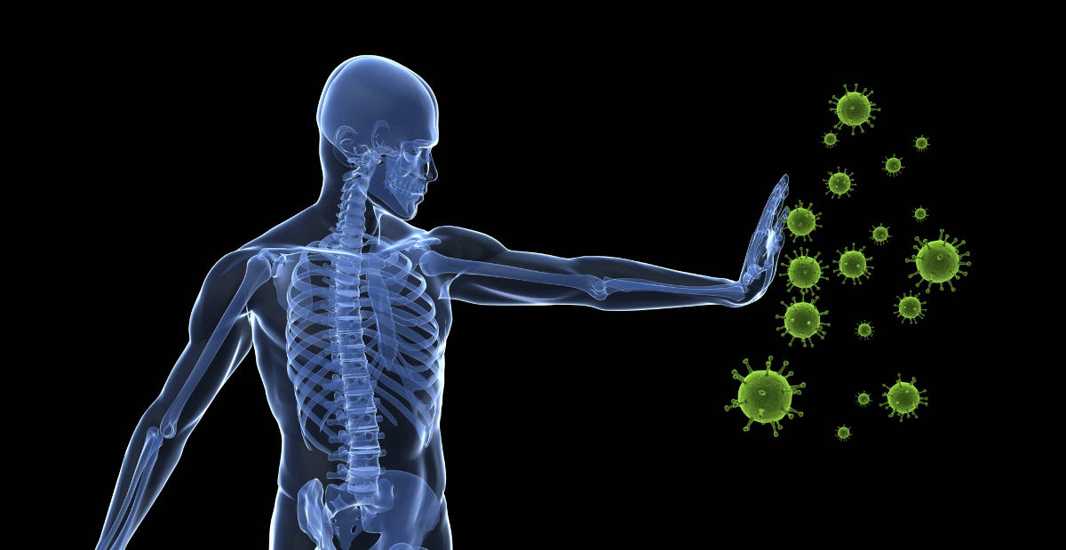 key nutrients to boost immune system