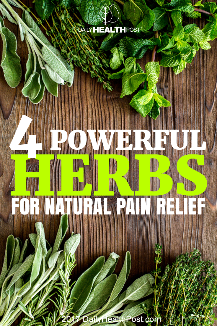 herbs pain relief