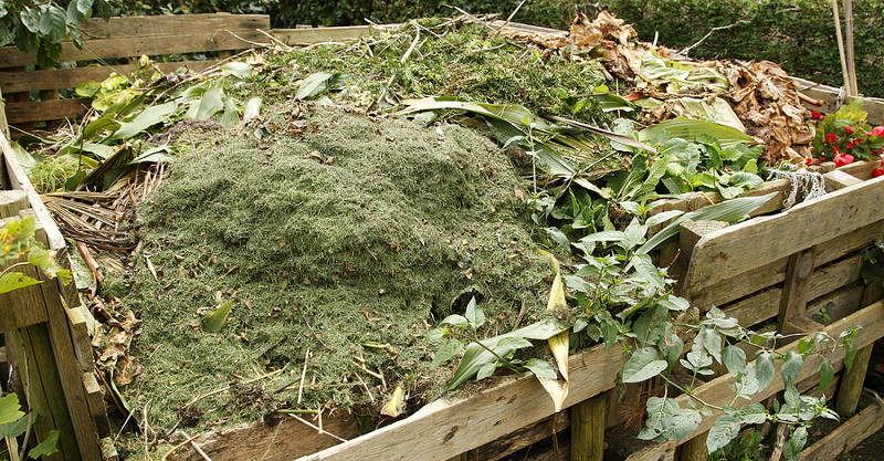 leaf and grass compost