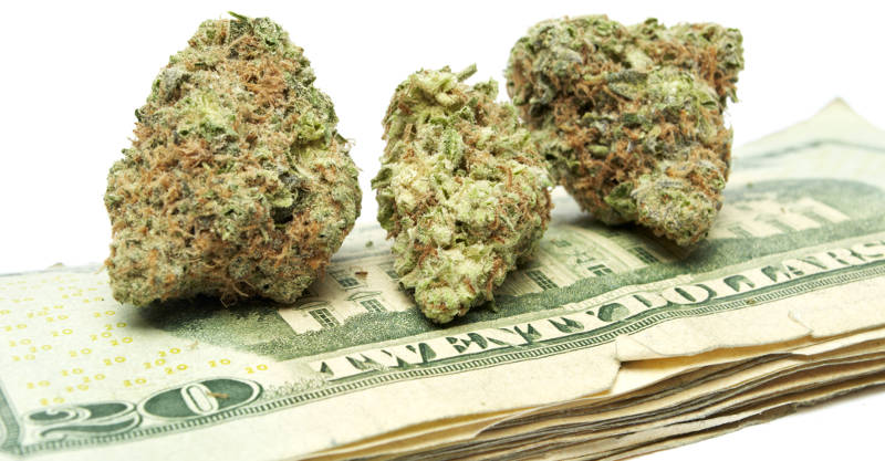 colorado marijuana tax return