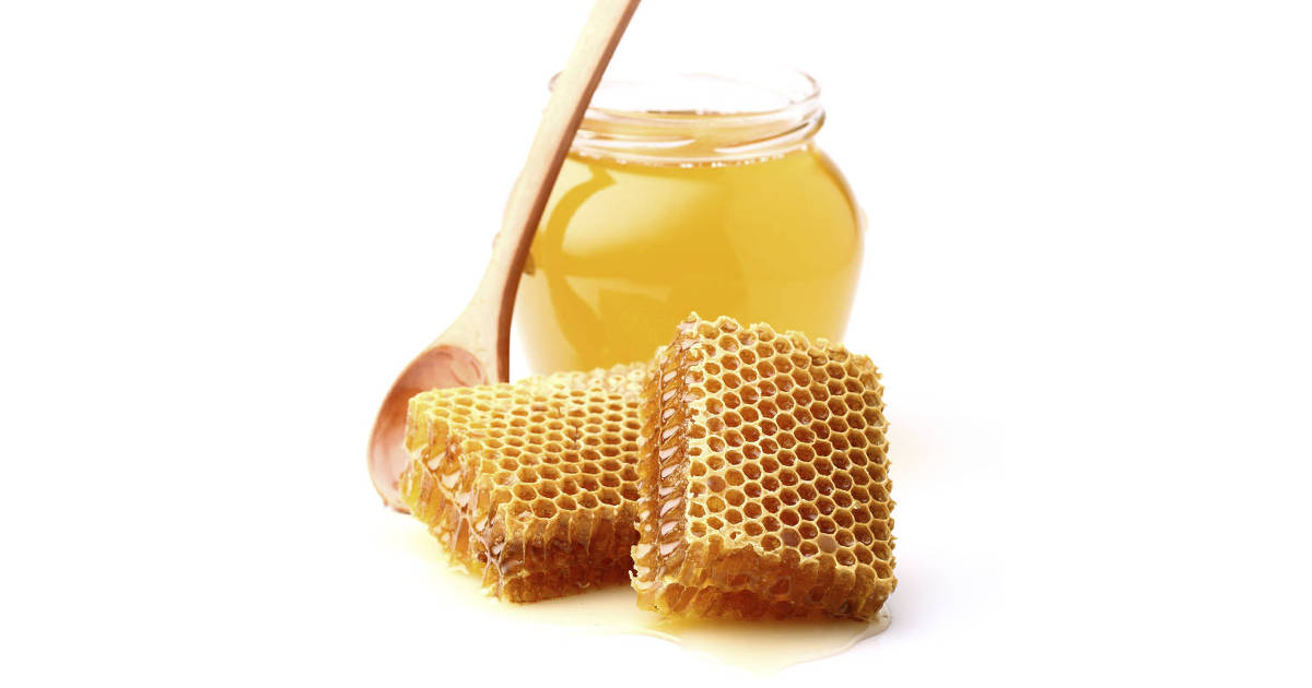 honey antibiotic resistance