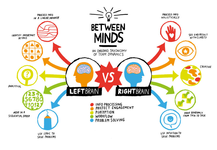 left brain vs. right brain
