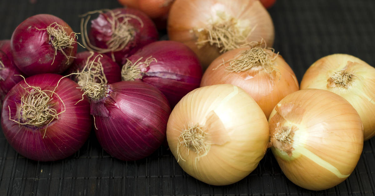 red and yellow onion bulbs