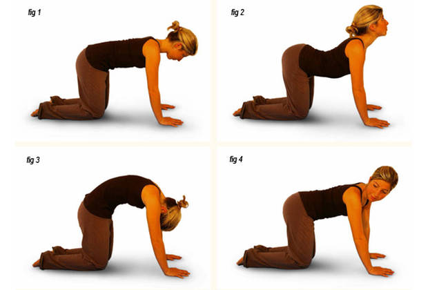 Easy Yoga Poses To Relieve Lower Back Pain