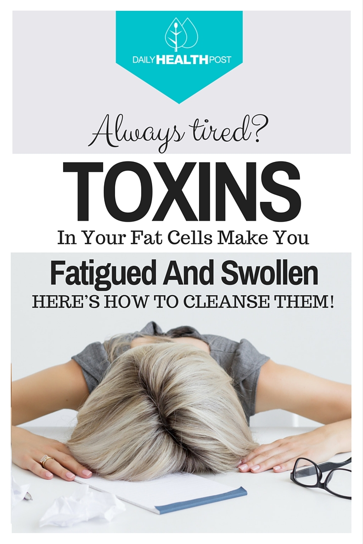 Toxins-Stored-In-Your-Fat-Cells-Make-You-Fatigued-And-Swollen