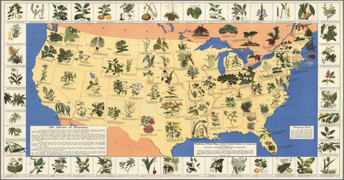 the u s before big pharma took over by dailyhealthpost february 3 2016 medicinal plants map