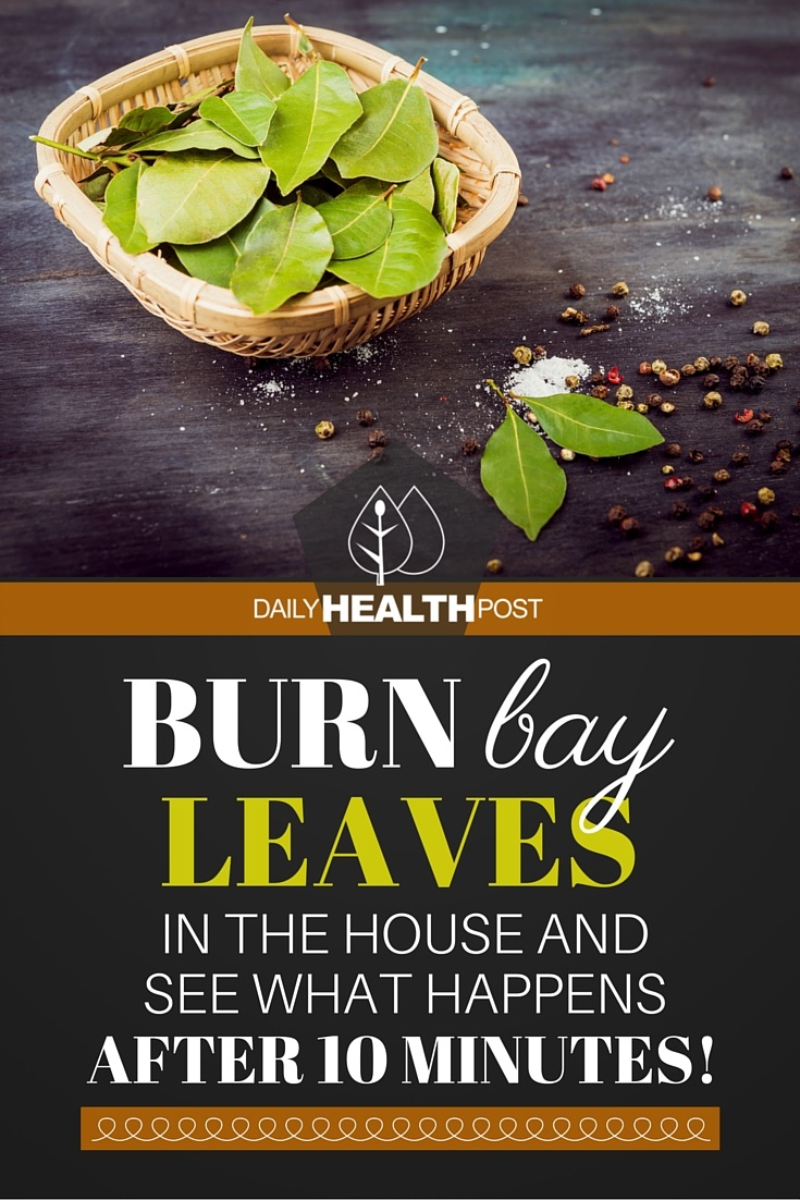 bay leaves in the house and see what happens after 10 minutes!