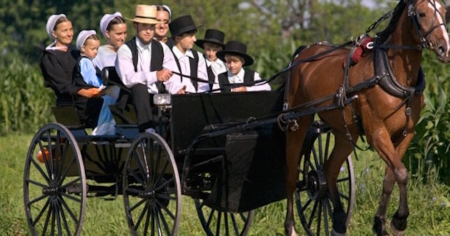 amish cancer