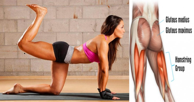 glute workout exercise