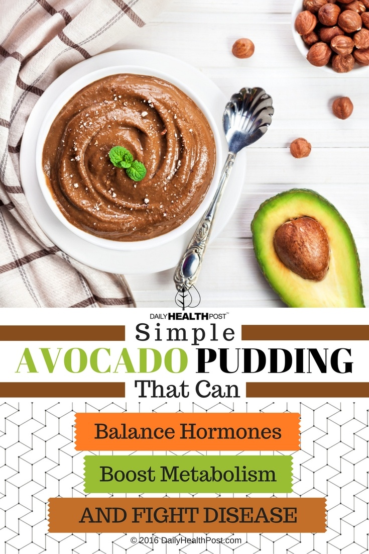 05 Simple Avocado Pudding That Can Balance Hormones, Boost Metabolism, And Fight Disease (1)