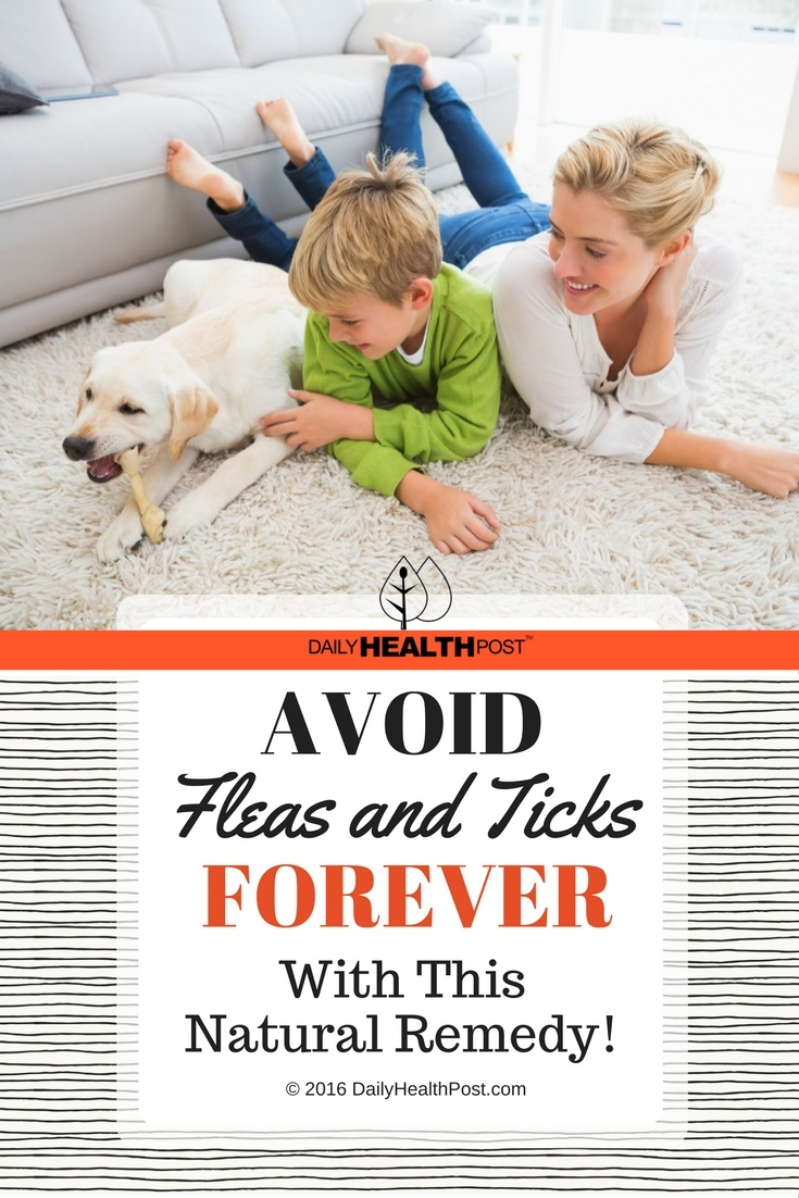 01 Avoid Fleas and Ticks Forever With This Natural Remedy!