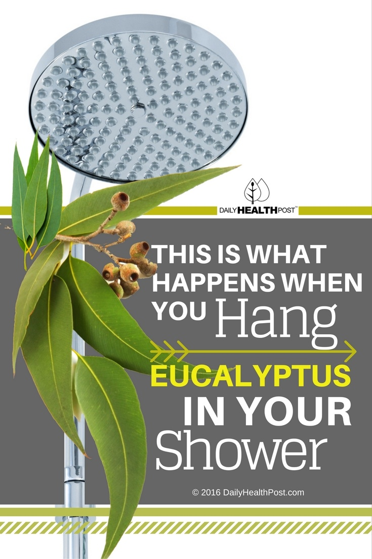 eucalyptus and shower