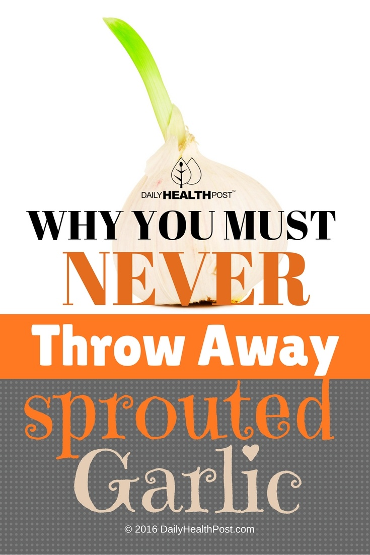 10 Why You Must Never Throw Away Sprouted Garlic