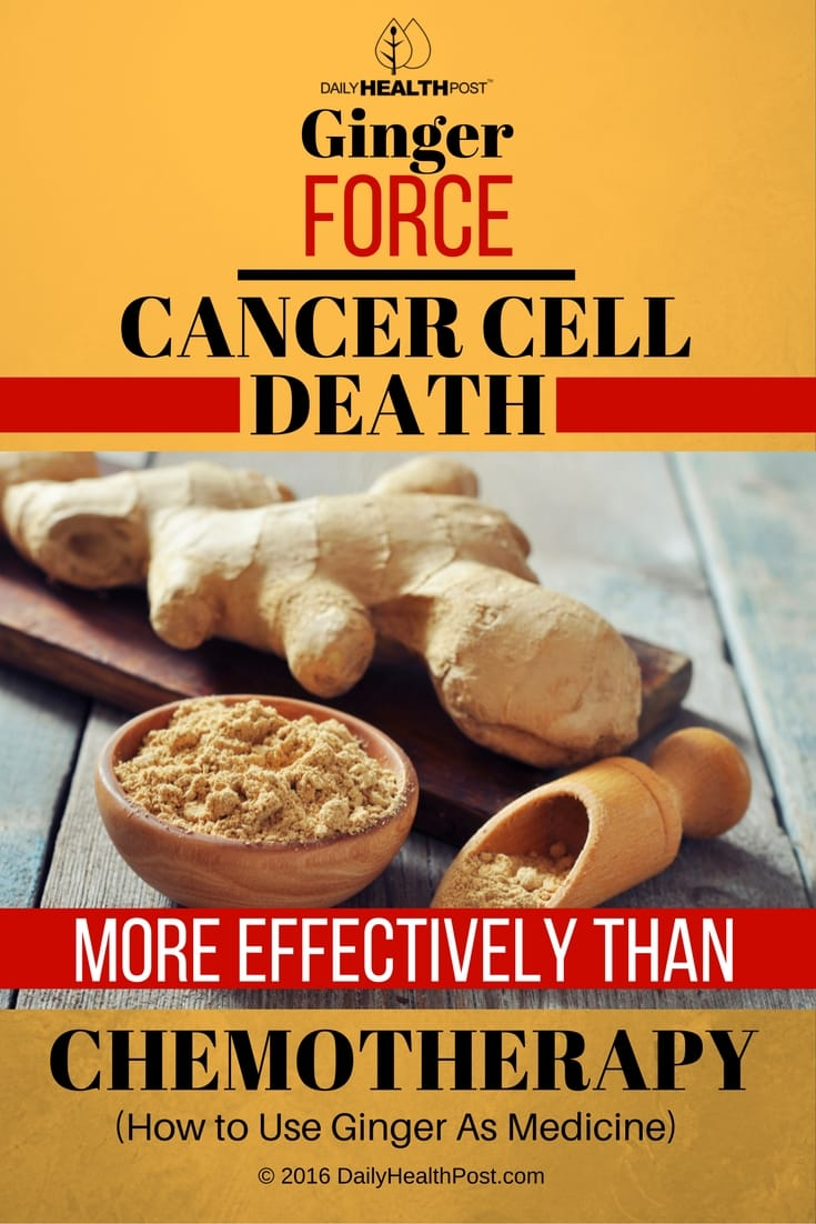 Ginger-Force-Cancer-Cell-Death-More-Effectively-Than-Chemotherapy-Use-Ginger-As-Medicine