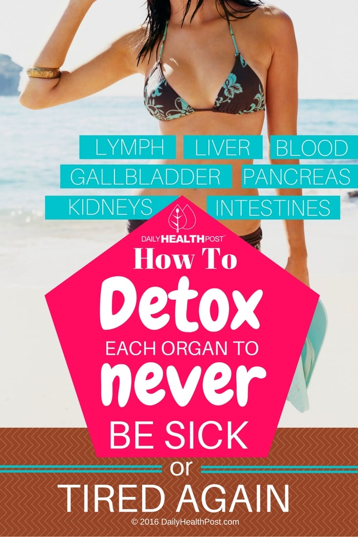 Detox-Each-Organ-To-Never-Be-Sick-or-Tired-Again