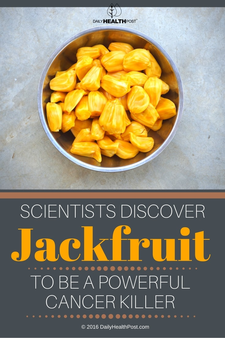 Scientists-Discover-Jackfruit-To-Be-A-Powerful-Cancer-Killer