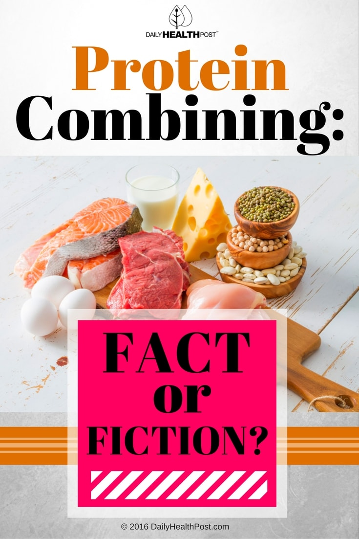 protein-combining-fact-or-fiction