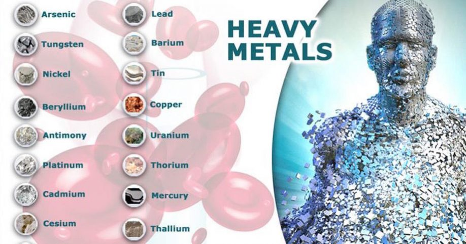 heavy metals chronic disease