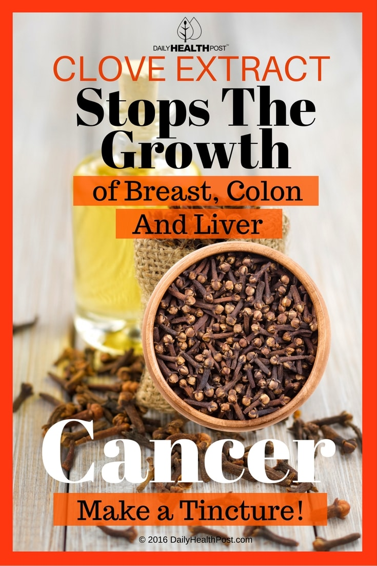 clove-extract-stops-the-growth-of-breast-colon
