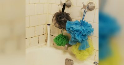 shower loofah bacteria