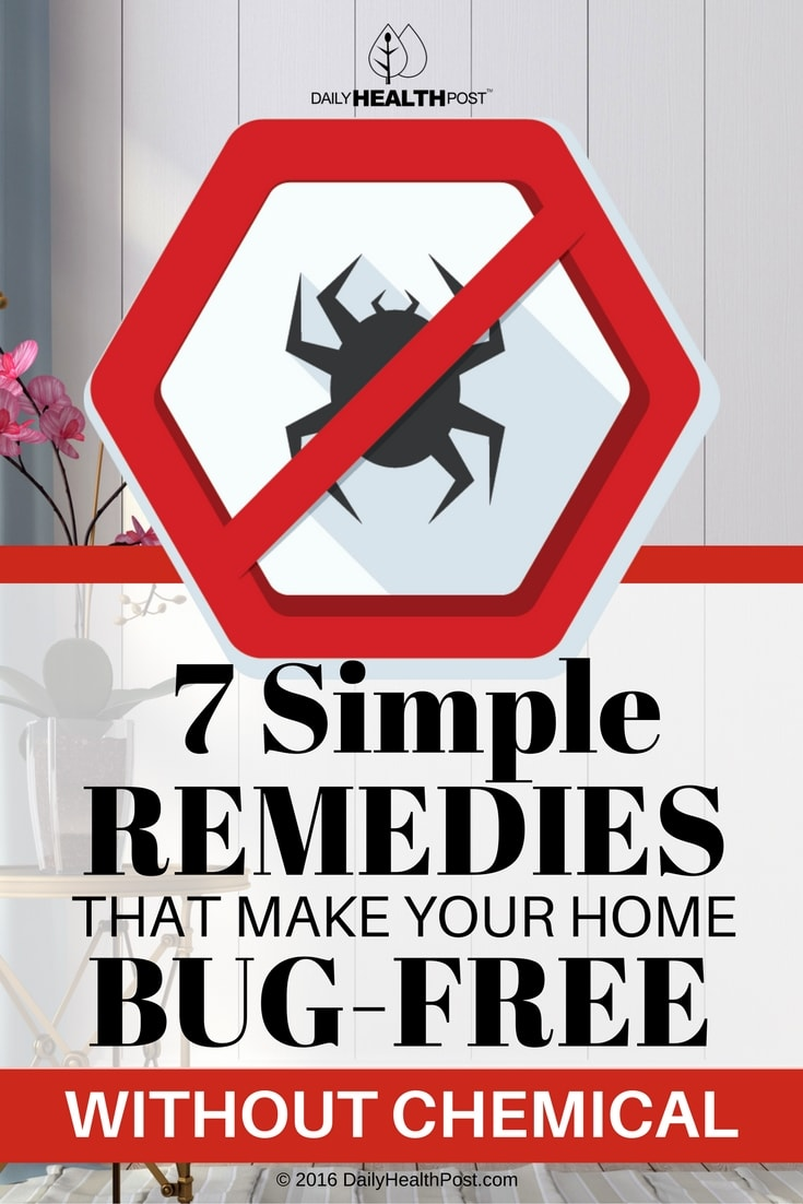7-simple-remedies-that-make-your-home-bug-free-without-chemica
