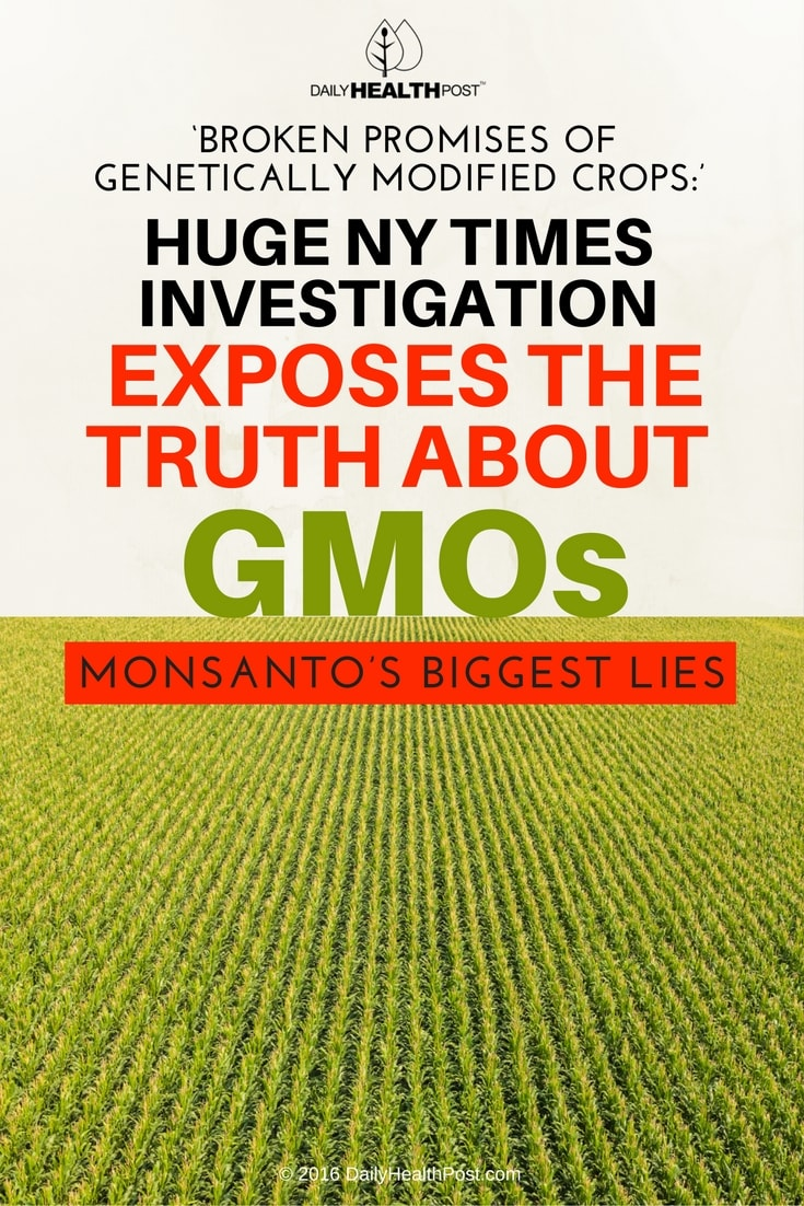 broken-promises-of-genetically-modified-crops-huge-ny
