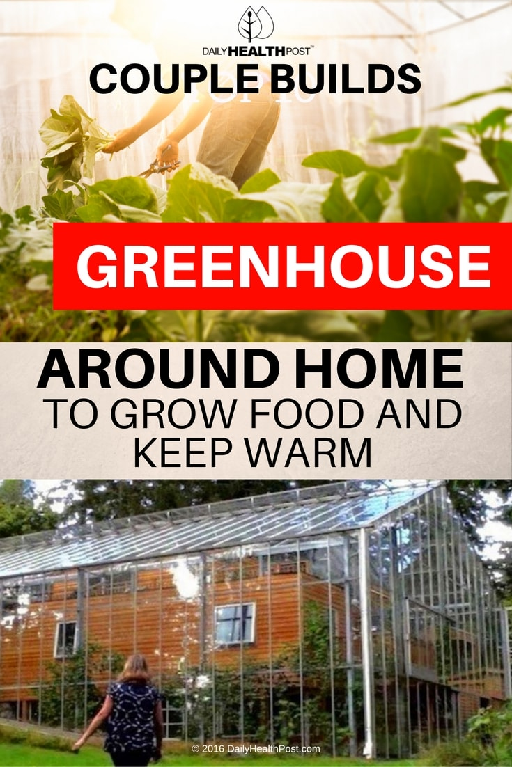 couple-builds-greenhouse-around-home-to-grow-food