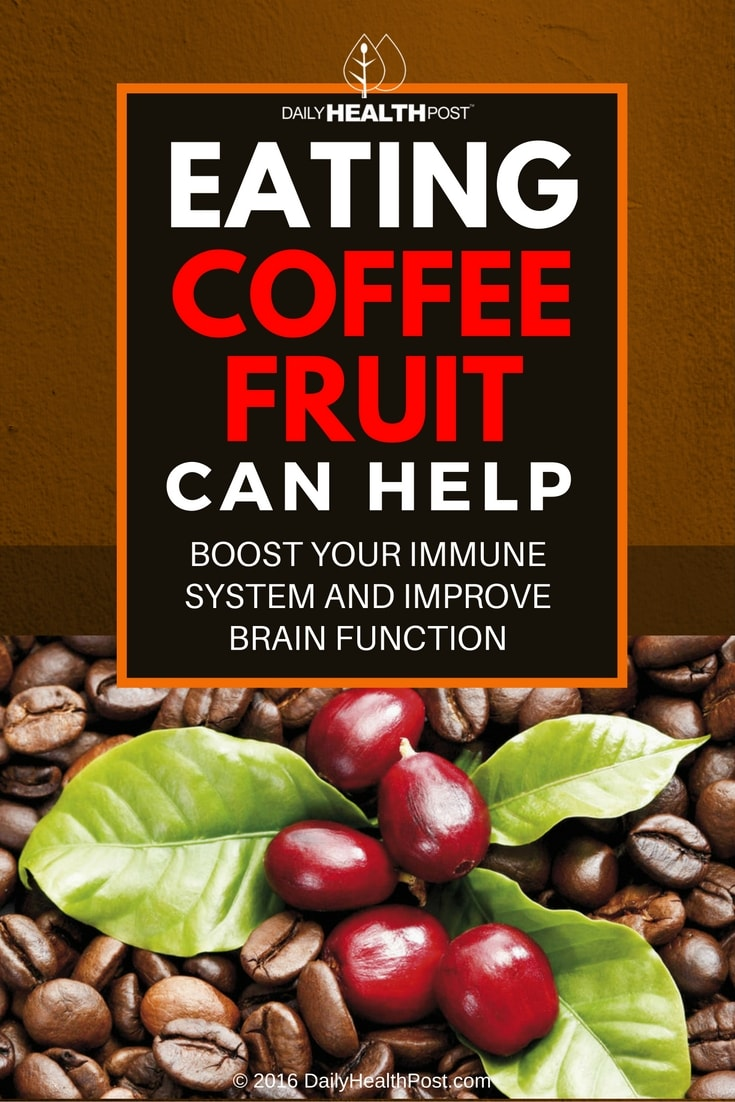 eating-coffee-fruit-can-help-boost-your-mmune-system