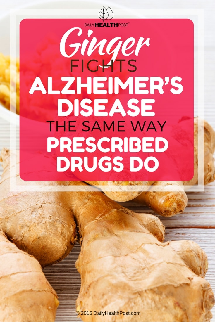 ginger-fights-alzheimers-disease-the-same-way-prescribed-drugs-do