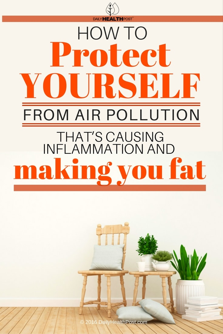 how-to-protect-yourself-from-air-pollution